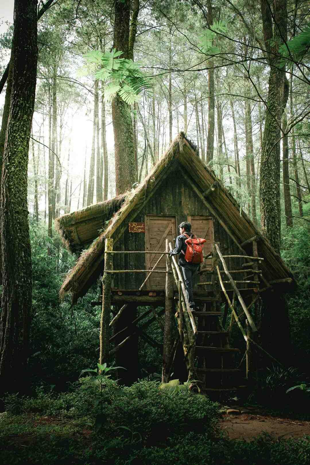Comment faire une cabane pour enfants dans les arbres ?